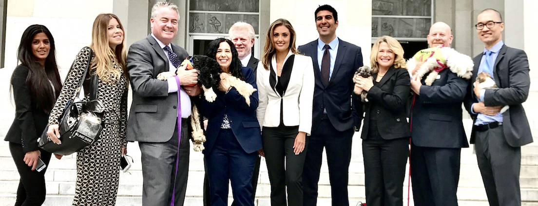 Peace 4 Animals' Legislative Partner, Social Compassion In Legislation (SCIL) Passes Two Bills In The First Committee At The California State Assembly.