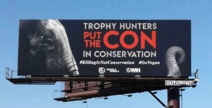 anti-poaching billboard